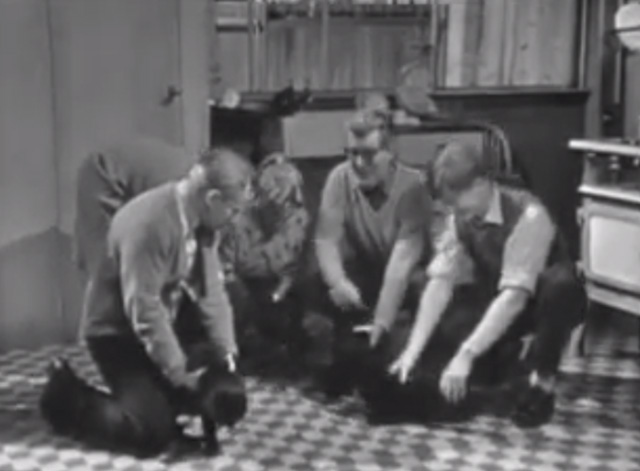 The Larkins - Cat Happy - Alf David Kossoff Jeff Ronan O'Casey Peggy Ruth Trouncer and Eddie Shaun O'Riordan with black cats on kitchen floor