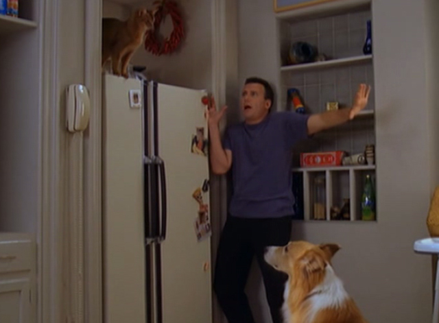 Mad About You - There's a Puma in the Kitchen - Paul Reiser and Murray the dog scared of cat puma on refrigerator