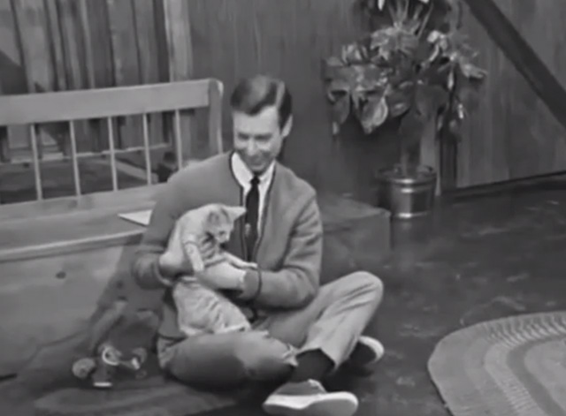 Mister Rogers' Neighborhood - Blackberry tabby cat being held by Fred Rogers