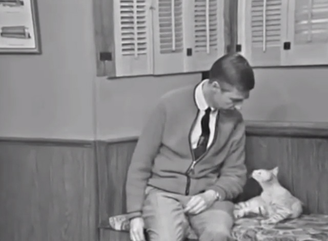 Mister Rogers' Neighborhood - Blackberry tabby cat on cushioned bench with Fred Rogers