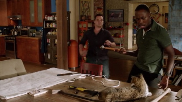 New Girl - Nerd - Winston threatens Ferguson Scottish fold cat with hammer
