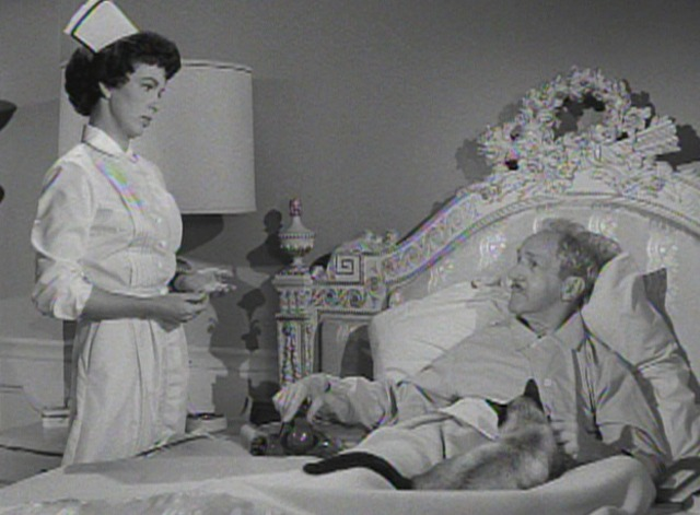 Perry Mason - The Case of the Caretaker's Cat - Siamese cat on bed