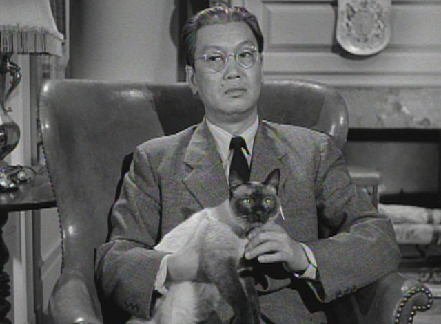 Perry Mason - The Case of the Caretaker's Cat - Siamese cat with Hing at reading of will