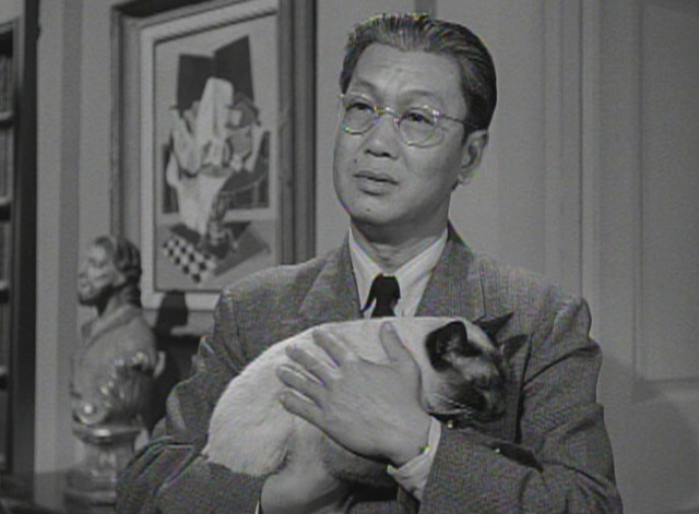 Perry Mason - The Case of the Caretaker's Cat - Siamese cat with Hing