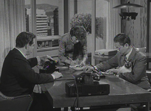 Perry Mason - The Case of the Caretaker's Cat - Siamese cat in Perry Mason's office