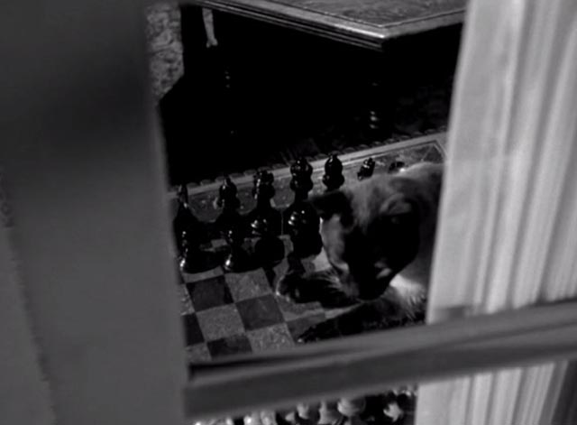 Perry Mason - The Case of the Silent Partner - Siamese cat sitting on chess board inside window