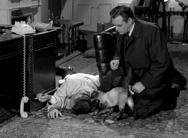 Perry Mason - The Case of the Silent Partner - Siamese cat sniffing corpse with Perry Mason Raymond Burr