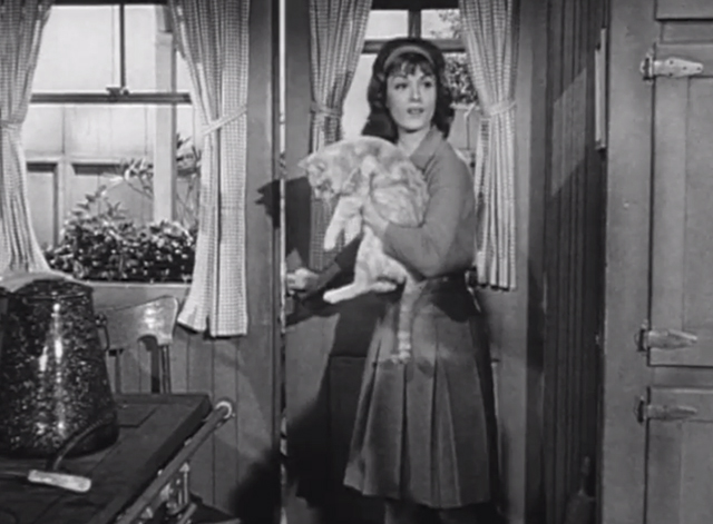 Petticoat Junction - Last Chance Farm - Bobbie Jo Pat Woodell entering kitchen with tabby cat Miranda Orangey