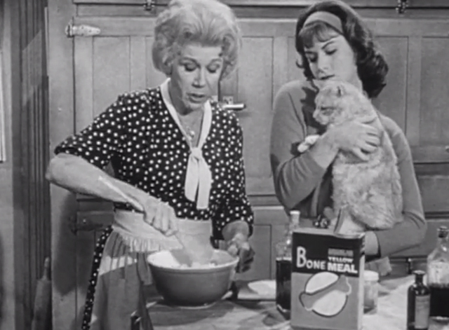 Petticoat Junction - Last Chance Farm - Bobbie Jo Pat Woodell holding tabby cat Miranda Orangey with Kate Bea Benaderet mixing bone meal