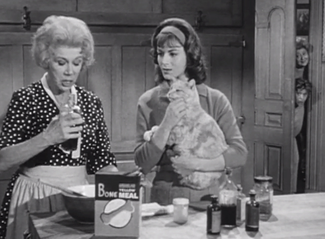Petticoat Junction - Last Chance Farm - women spying on Bobbie Jo Pat Woodell holding tabby cat Miranda Orangey with Kate Bea Benaderet mixing bone meal