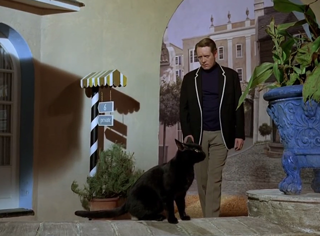 The Prisoner - Dance of the Dead black cat waiting for Number 6 Patrick McGoohan