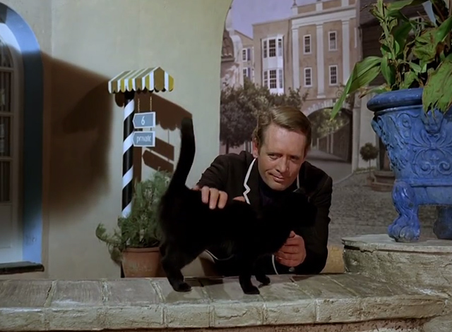 The Prisoner - Dance of the Dead black cat petted by Number 6 Patrick McGoohan