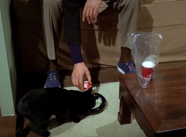 The Prisoner - Dance of the Dead black cat given milk in bowl on floor