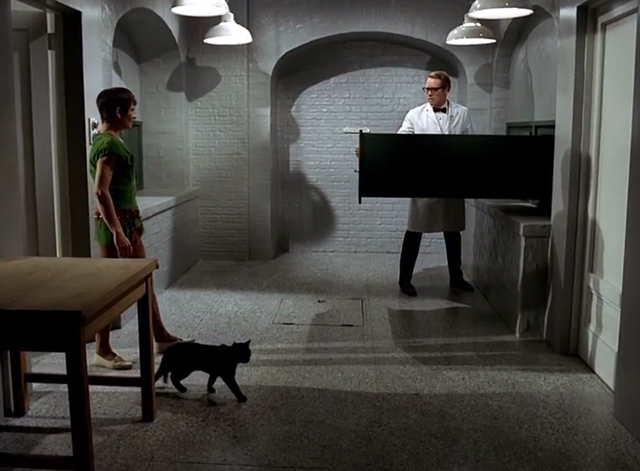 The Prisoner - Dance of the Dead black cat enters room with Number 2 Mary Morris to find Number 6 Patrick McGoohan
