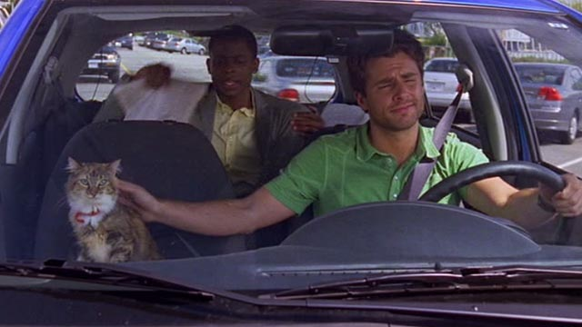 Psych - 9 Lives - calico cat Little Boy Cat riding shotgun in car with Shawn James Roday and Gus Dulé Hill