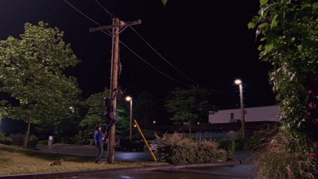 Psych - 9 Lives - calico cat Little Boy Cat watching Shawn James Roday and Gus Dulé Hill on telephone pole