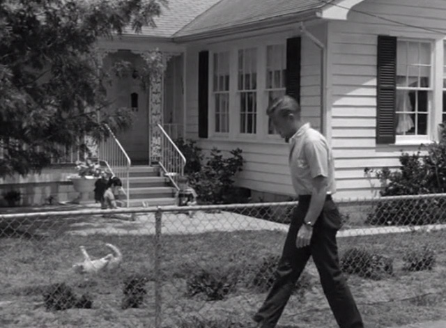 Route 66 - Shadows of an Afternoon - Tod Martin Milner walking in front of yard with tabby cat rolling on lawn and two girls