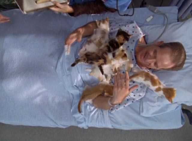 Scrubs - My House - male patient covered with kittens