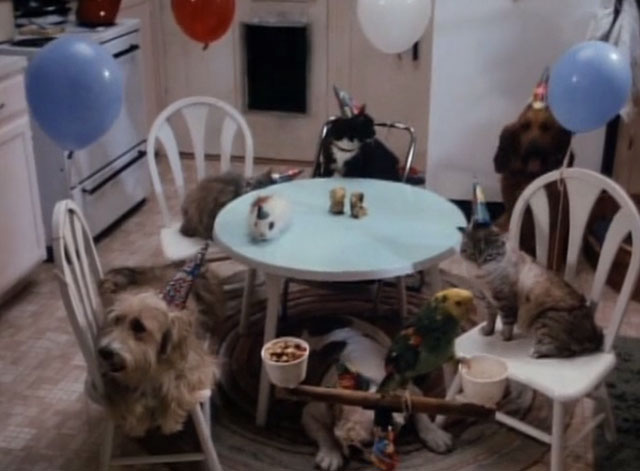 Tales From the Crypt - Collection Completed - animals wearing party hats and sitting at kitchen table