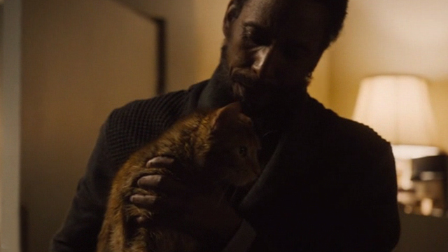 This is Us - Clooney - orange tabby cat Clooney with bent ear held by William Ron Cephas Jones