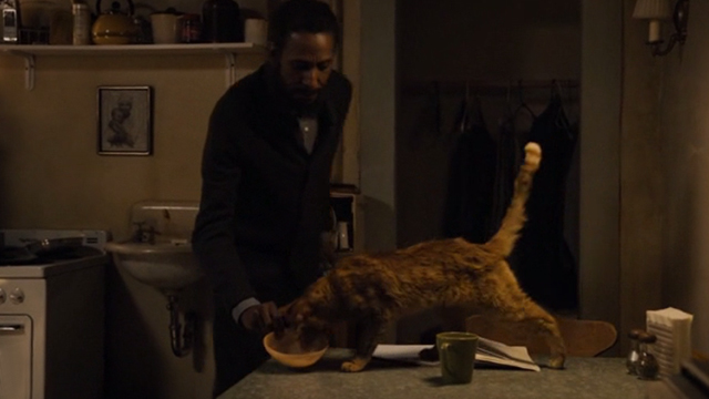 This is Us - Clooney - orange tabby cat Clooney with bent ear being fed by William Ron Cephas Jones