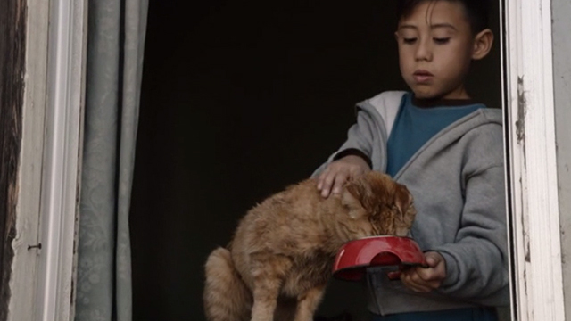 This is Us - Clooney - orange tabby cat Clooney with bent ear eating from bowl held by boy Eden Gamiz