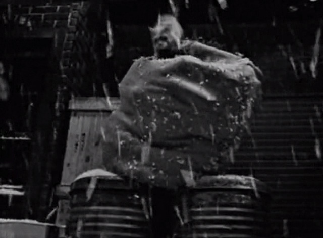 The Twilight Zone - The Night of the Meek - tabby cat knocking sack off garbage cans