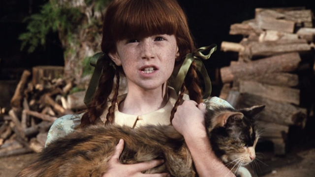 The Waltons - The Loss - Elizabeth Kami Cotler holding large Calico cat