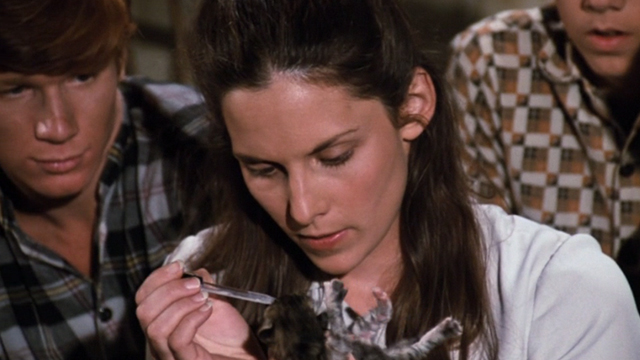 The Waltons - The Loss - Cousin Olivia Deborah White feeding tiny kitten with eyedropper as Walton boys watch
