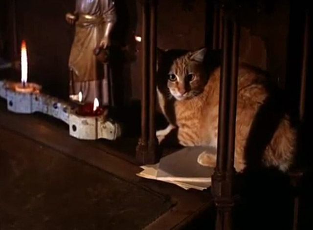 The Wild Wild West - The Night of the Fugitives - ginger tabby cat on church altar reversed