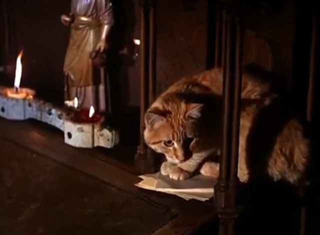 The Wild Wild West - The Night of the Fugitives - ginger tabby cat starting to get off church altar