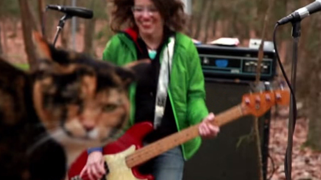 Superchunk - Crossed Wires - tortoiseshell cat in front of band Superchunk