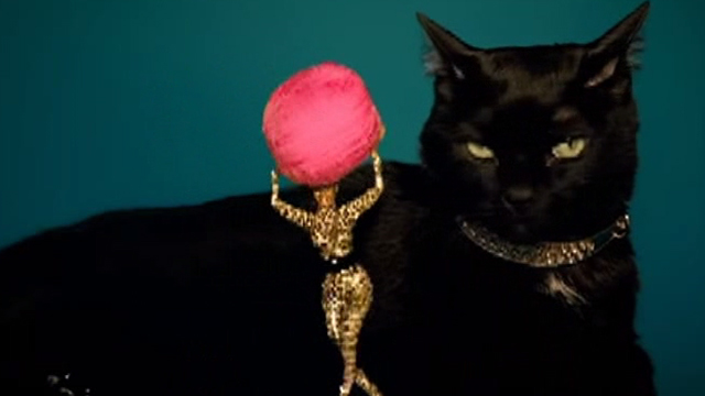 Beyoncé - Kitty Kat - Beyoncé playing with giant black cat and ball of string