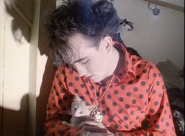 The Love Cats - The Cure - Robert Smith sitting with cream colored kitten on lap