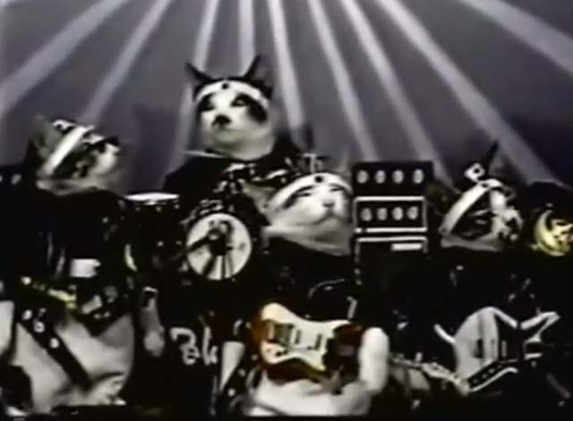 Nameneko - rebel cat band