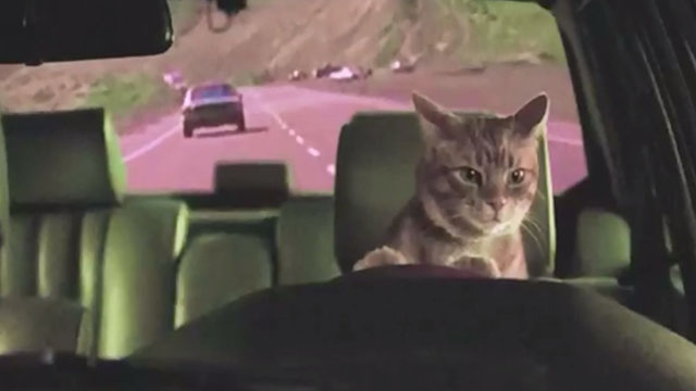 Holy Fuck - Red Lights - cat driving cat in chase from Bullitt