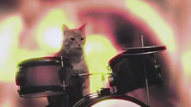 Holy Fuck - Red Lights - cat with drums